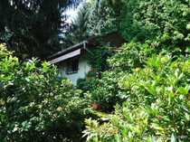 Wildromantisches Freizeitgrundstück mit gemauertem Häusle