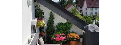 Schöne 4 Zimmer Wohnung mit Loggia in zentraler Lage in Werste