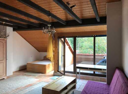 1 Zimmerapartment in Hanau für 1 Person / ideal für Wochenenddfahrer / Innensatdtlage & nähe HBF