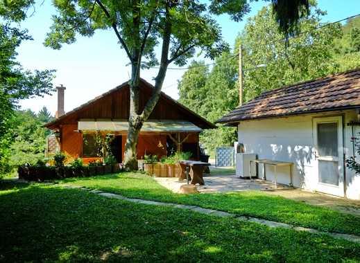 Traumhaftes Grundstück im Winzerort mit Holzhaus