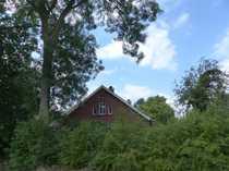 Collinghorst modernisierter Bauernhof mit großer