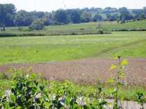Landwirtschaftsfläche Wiese im