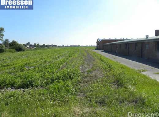 Büsum/Westerdeichstrich: Baugrundstück mit ca. 1000 m² Eigenland in ländlicher Lage