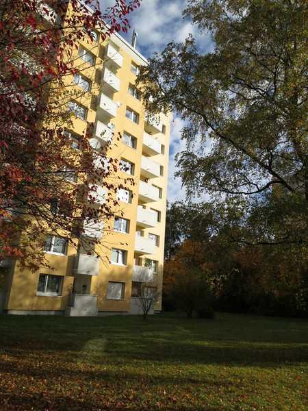 Gemütliche 1-Zimmer-Wohnung Nähe Fideliopark in Bogenhausen (München)