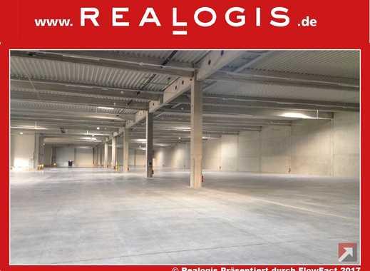 Bremen, ca. 5.000 m² Lager- und Produktionsfläche zu vermieten