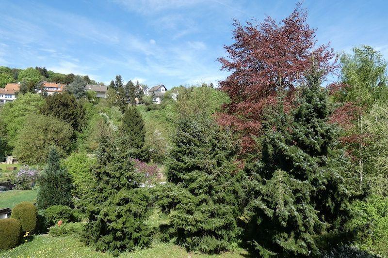 Blumenauer- Garten