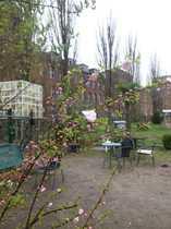 Bild Mini Zoo zu vermieten