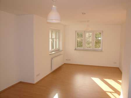 Helle Souterrain Wohnung Neubau München Fasangarten in Obergiesing (München)