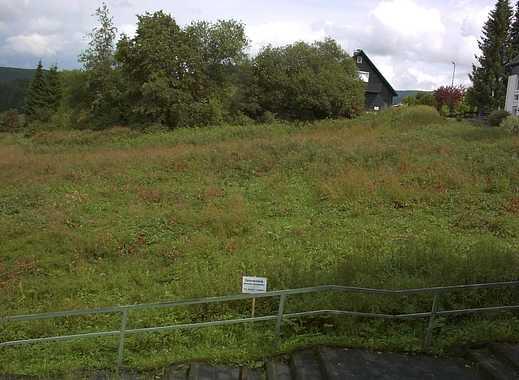 Wohnen, wo andere Urlaub machen - Grundstück in Altenau