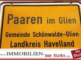 Kiefernwald ca. 500 Festmeter