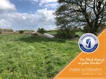 2 Flächen nahrhaftes Dauergrünland in
