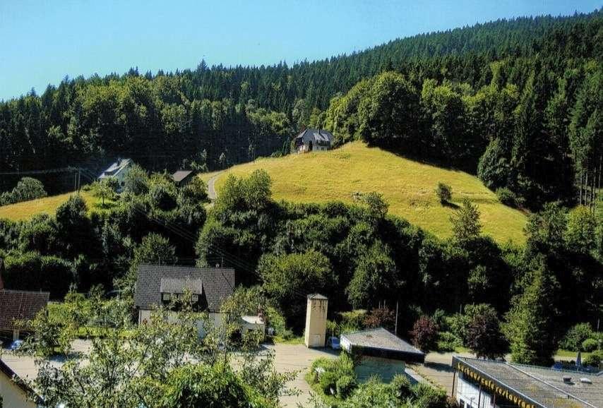 Wohnung Bad Rippoldsau-Schapbach