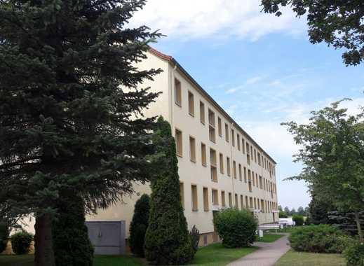 Güttin, NEU renovierte 2-Raum-Wohnung mit 500 € Umzugskostenhilfe