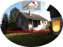 Bild Kleiner Spreewaldhof im Dornröschenschlaf sucht neue Eigentümer…