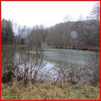 Fischweiher bei Mittelbrunn