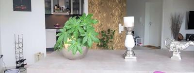 Exklusive, neu ausgestattete 3-Zimmer Gartenwohnung in einem 2-Familienhaus
