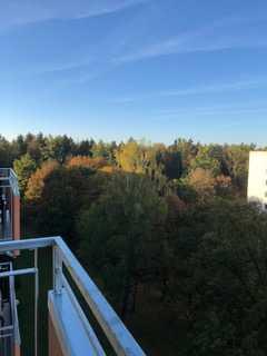 Teilmöblierte Traumwohnung über den Dächern von München mit Blick auf den Forstenrieder Wald in Fürstenried (München)