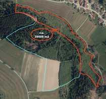 3 95 ha Waldfläche Nähe