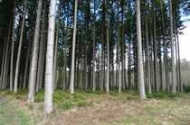 Bild Waldgrundstücke im Gemeindebereich Obing
