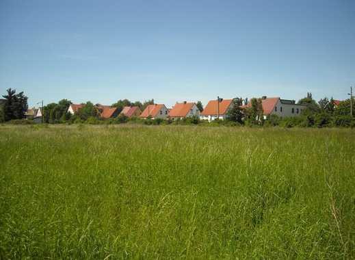 Grundstück zur künftigen Bebauung in Eilenburg-Ost