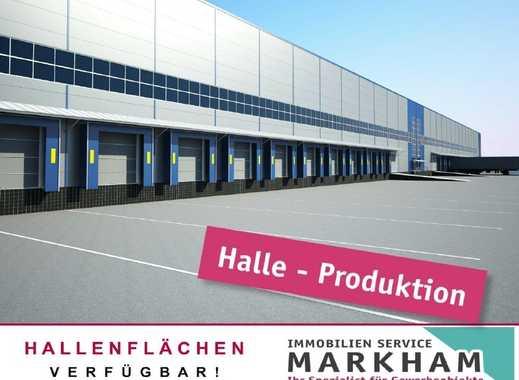Logistik-Produktion-Neubau INDUSTRIEGEBIET in Kaiserslautern
