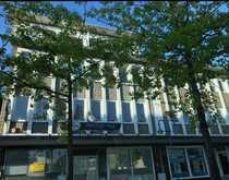 renovierte 2-Zimmer Mietwohnung in Bünde
