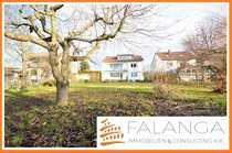 Hahnheim - 3 prima Eigentumswohnungen mit