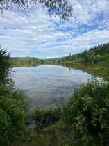 Naturparadies mit Fischteichen nähe Geisenfeld