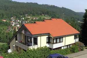 1 Zimmer Wohnung in Calw (Kreis)