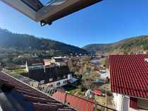 Schöne DG-Wohnung mit Dachterrasse in