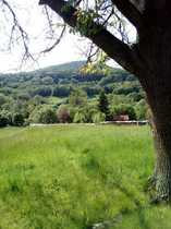 Tann Grundstück