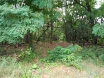 Waldfläche im Außenbereich