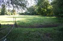 Bild 38 ha Hof in Alleinlage in Ostseenähe zu verkaufen