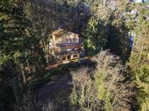 Großzügiges Apartment - direkte Waldlage Blick