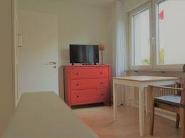 Zimmer 4.2