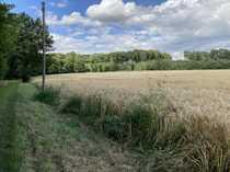 Ackerland in COE-Kirchspiel