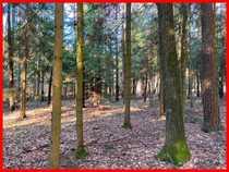 Waldgrundstück in Fichtenau