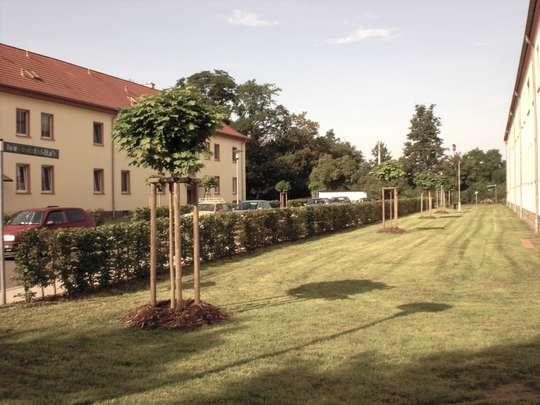 Ab sofort wieder zu haben - Familienwohnung in Neukieritzsch
