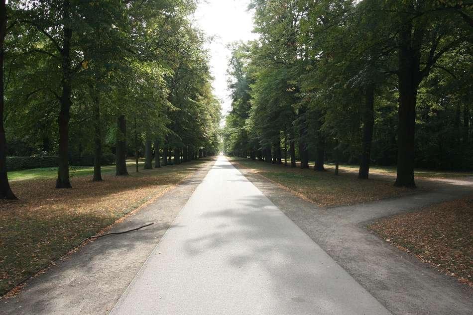 Großer Garten IV