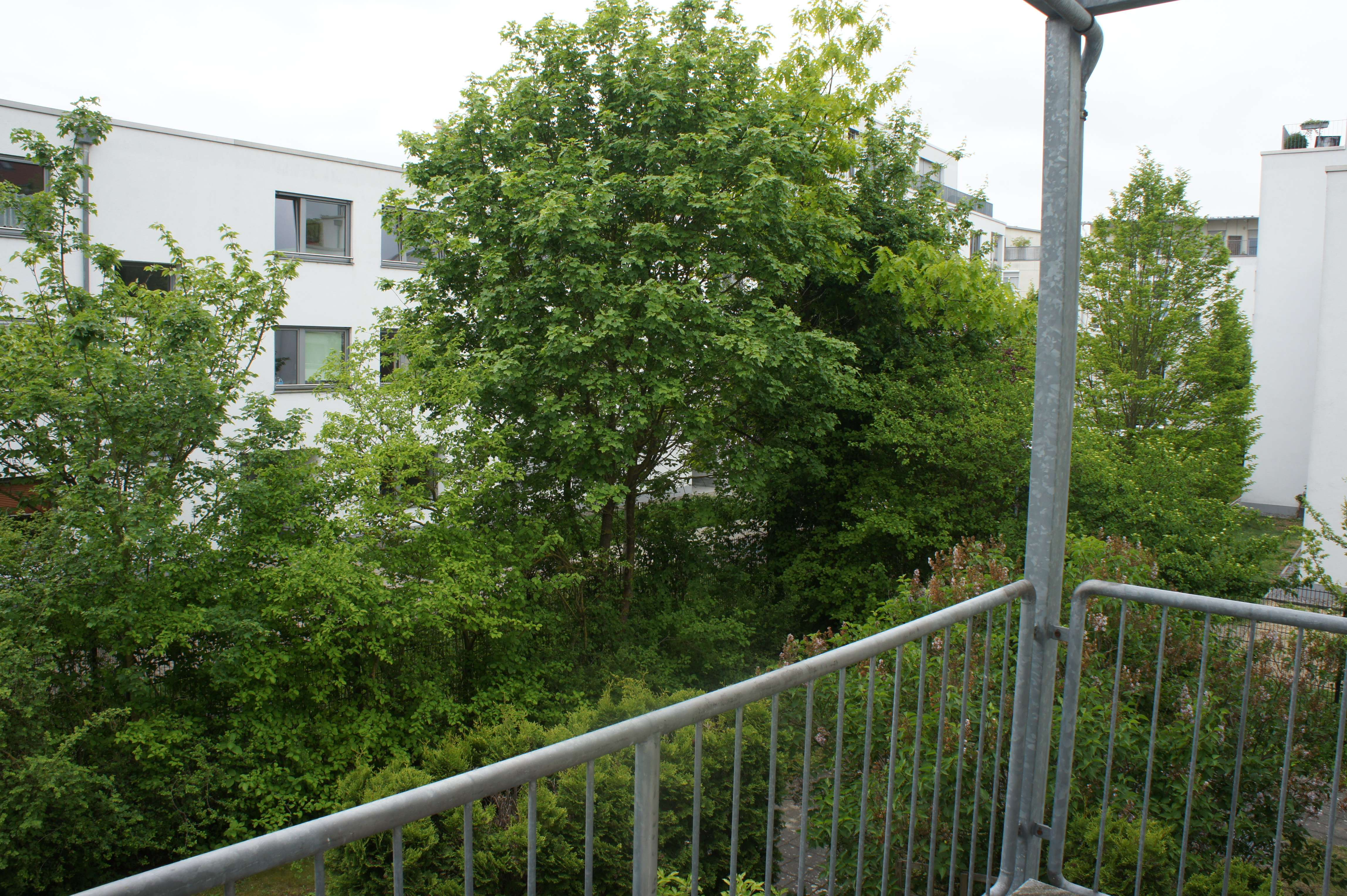 Helle 2-Zimmer-Wohnung mit Süd-Balkon im Inneren Westen!