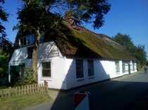 Reetdachhaus am Elbedeich/