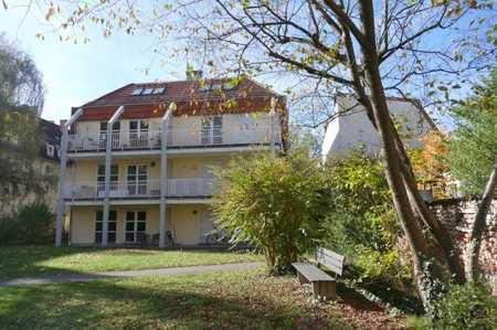 Top möbliert und vollausgestattet: schönes, hochwertiges Gartenappartment an der U2 in Milbertshofen (München)