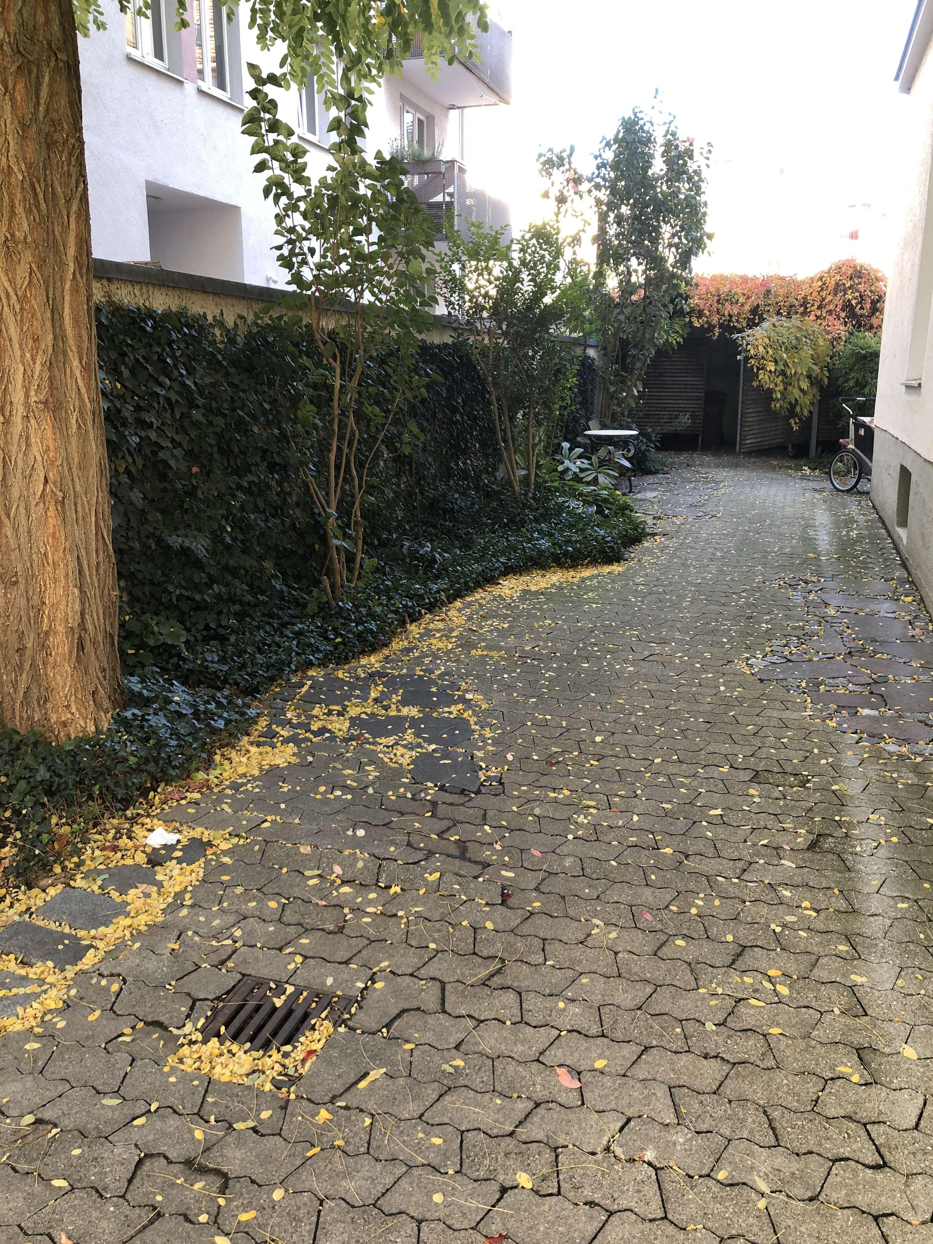 In Altbau:schöne helle 2-Zi-Whg mit ca 75m²,EBK, Tageslichtbad, Holzdielenboden in Maxvorstadt (München)