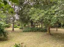 bauträgerfreies Grundstück für freistehendes Einfamilienhaus