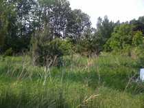 Schönes Grundstück im Grünen nur