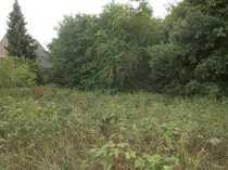 Grundstück in Randlage dörflich und