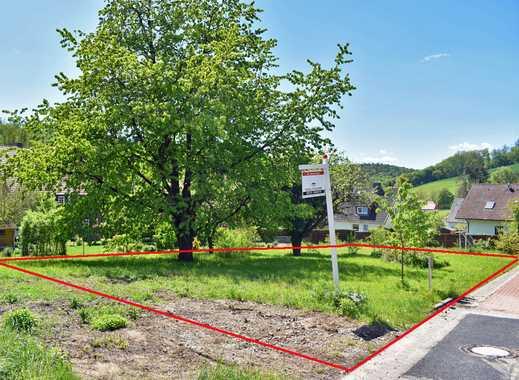 Großzügiges Baugrundstück in Winzenburg