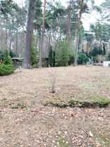1600 qm Traumgrundstück in Villenlage