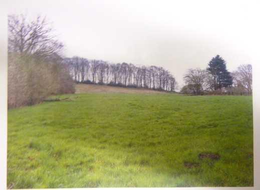 Landwirtschaftliche Nutzfläche/ Hobbygrundstück, 13.368qm in Wetter