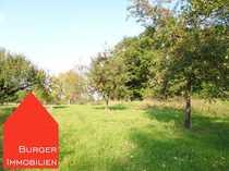 Bild Landwirtschaftsfläche in Knittlingen - Obstwiese mit Waldanteil